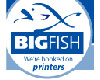 Big Fish - United Kingdom